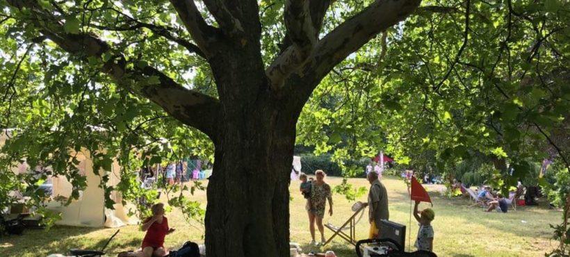 Festiwal Parkowisko – tak się bawiliśmy w Parku Steffenśow