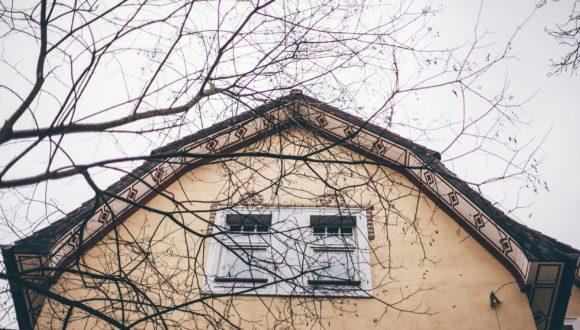 2 anna włodarczyk_spójrz w górę - dach