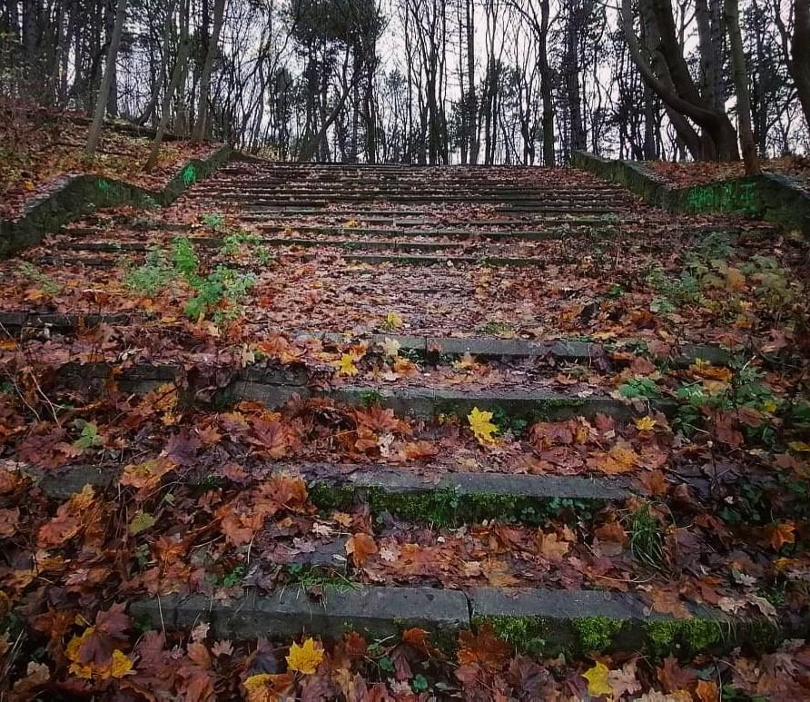 Anna-Patralska-schody-na-Wroniej-Górce-1