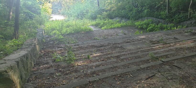 Rusza pierwszy etap zagospodarowania terenów leśnych na Wroniej Górce